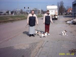 wandelen in winters zonnetje met de honden